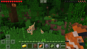Minecraft Pocket Edition 1.2.0.15