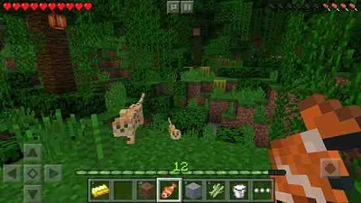 Minecraft Pocket Edition 1.1.3.52